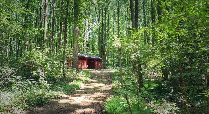 Hibernia County Park