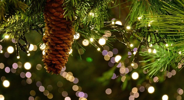 Santa to Visit Upper Uwchlan for 3rd Annual Tree Lighting at Upland Farms