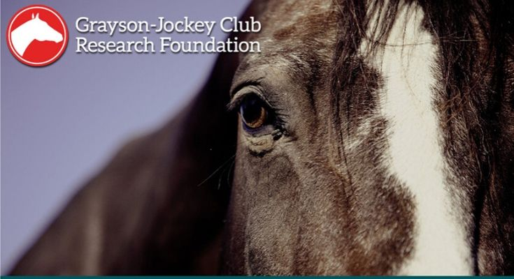 Thoroughbred Education and Research Foundation Awards $5000 to Grayson-Jockey Club Research Foundation