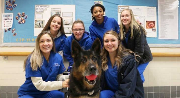 TCHS Students Learn Valuable Life Lessons While Caring for a Retired K-9 Dog