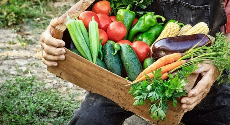 Casey Encourages Participation in USDA 'Farmers to Families Food Box' Initiative in Order to Benefit Pennsylvania's Farmers and Families