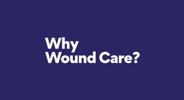 HMP's Why Wound Care?™ Initiative Launches Web Portal for Physical Therapy Students