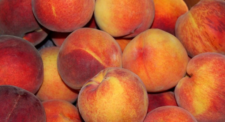 CDC has updated its food safety alert for a Salmonella illness outbreak linked to peaches