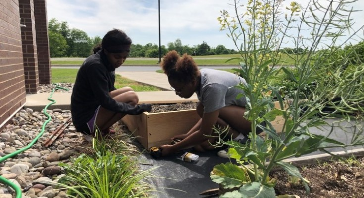 Lincoln University Researchers Receive National Science Foundation Grant for Sustainability Research, Hands-on Student Learning Opportunities