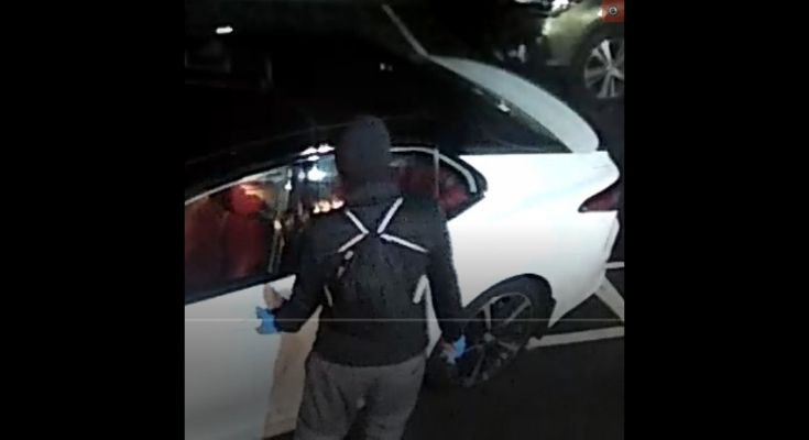 Police Search for Individual in Connection to Vehicle Break-in