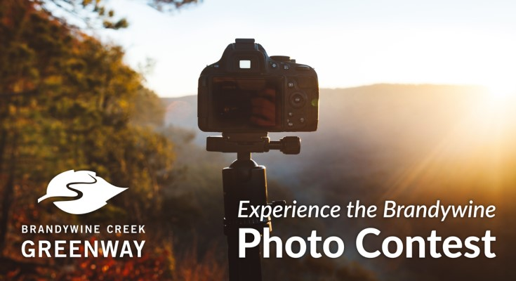The Brandywine Creek Greenway Celebrates a Milestone Anniversary and Announces New Photo Contest