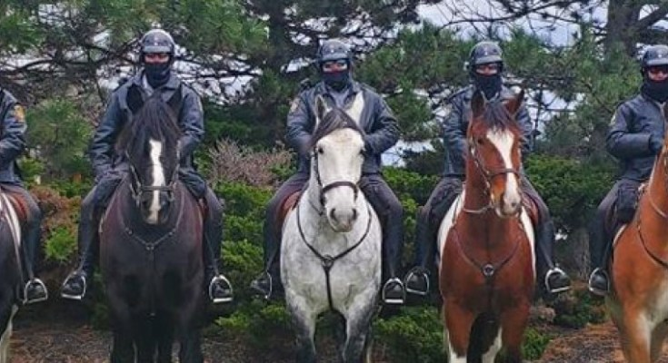 PA State Police Seeks Horse Donations