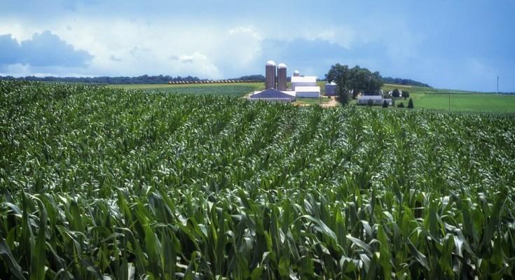 Pennsylvania agriculture