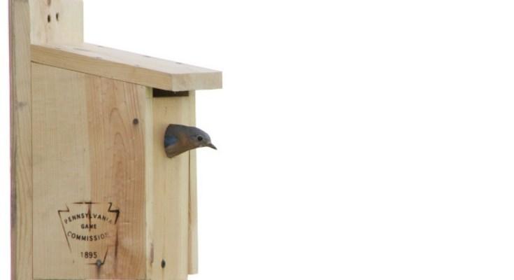 Bluebird Nest Boxes