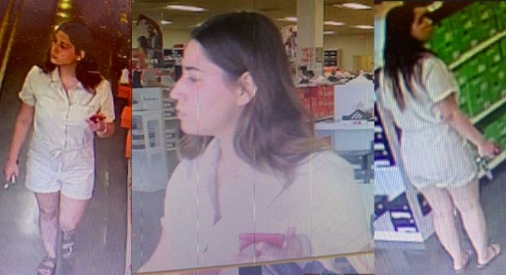 Birkenstock Shoplifting Suspect