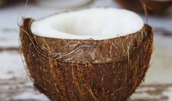 Le scaglie di cocco / The coconut flakes