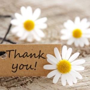 Gratitudine / Gratitude