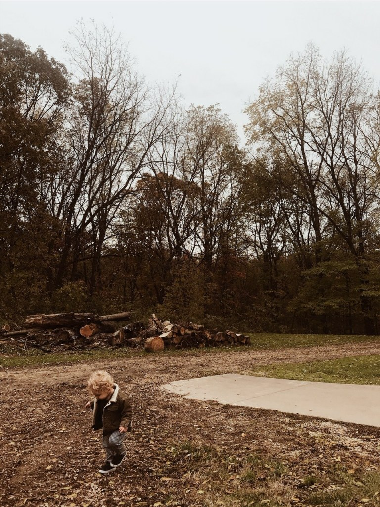 toddler in the fall