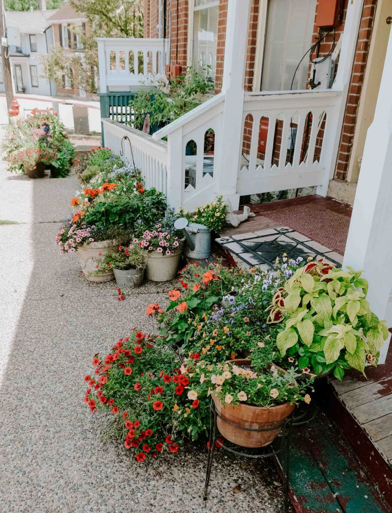 why you should visit galena