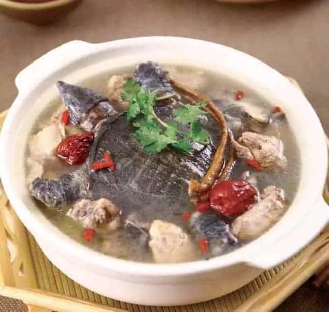 Nourishing Softshell TurtlesHot Pot Recipe