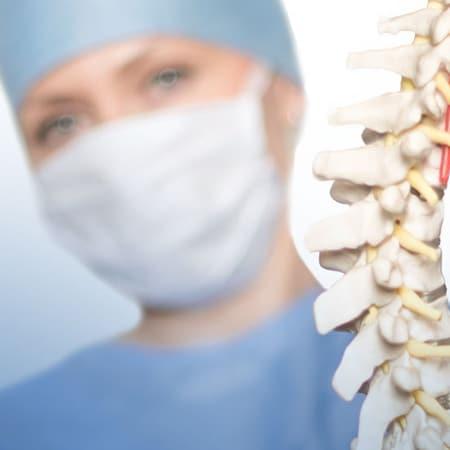 Surgeon holding spine model