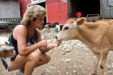Kelly Cronin of Prospect pets a calf that will be part of her petting zoo and farm stand on her Spring Road property.