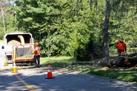 Crews from Connecticut Light & Power clean up downed trees in Prospect Monday morning. - LARAINE WESCHLER