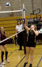 Woodland lost 3-0 versus Sheehan in the Class M quarterfinals Monday.