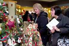 Nearly 100 trees graced the lobby of Naugatuck Savings Bank Dec. 2 for United Way of Naugatuck and Beacon Falls' 5th Annual Festival of Trees. - LARAINE WESCHLER