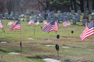 American flags mark the graves of veterans in St. James Cemetery on Cross Street in Naugatuck. Four boxes of flags were taken from the cemetery Nov. 9. –ELIO GUGLIOTTI