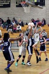 Woodland topped Ansonia Feb. 7, 49-29. –ELIO GUGLIOTTI