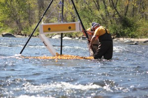 Michael Krenesky, in back, and Robert Bradley of Beacon Falls release the rubber ducks last year into the Naugatuck River for the Beacon Falls Lions Club's annual duck race. –FILE PHOTO