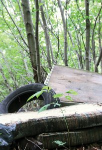An old tire and mattresses are piled in the woods at the end of Haviland Drive in Beacon Falls. The town wants to block the road to stop the illegal dumping. –LUKE MARSHALL