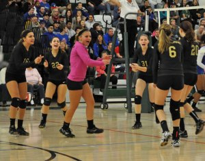 Woodland players celebrate after scoring a point verses Waterford Wednesday in the Class M volleyball semifinals in Guilford. The Hawks fell, 3-0. - KATE MINUTILLO/HAWK HEADLINES