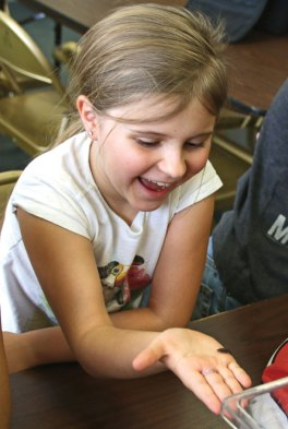 Emilia Sierakowska, 8, of Beacon Falls, laughs as she lets a mealworm beetle crawl on her during the Insect Investigation program co-sponsored by the Beacon Falls Library and the Beacon Falls Parks and Recreation Department April 22 in Beacon Falls. –LUKE MARSHALL