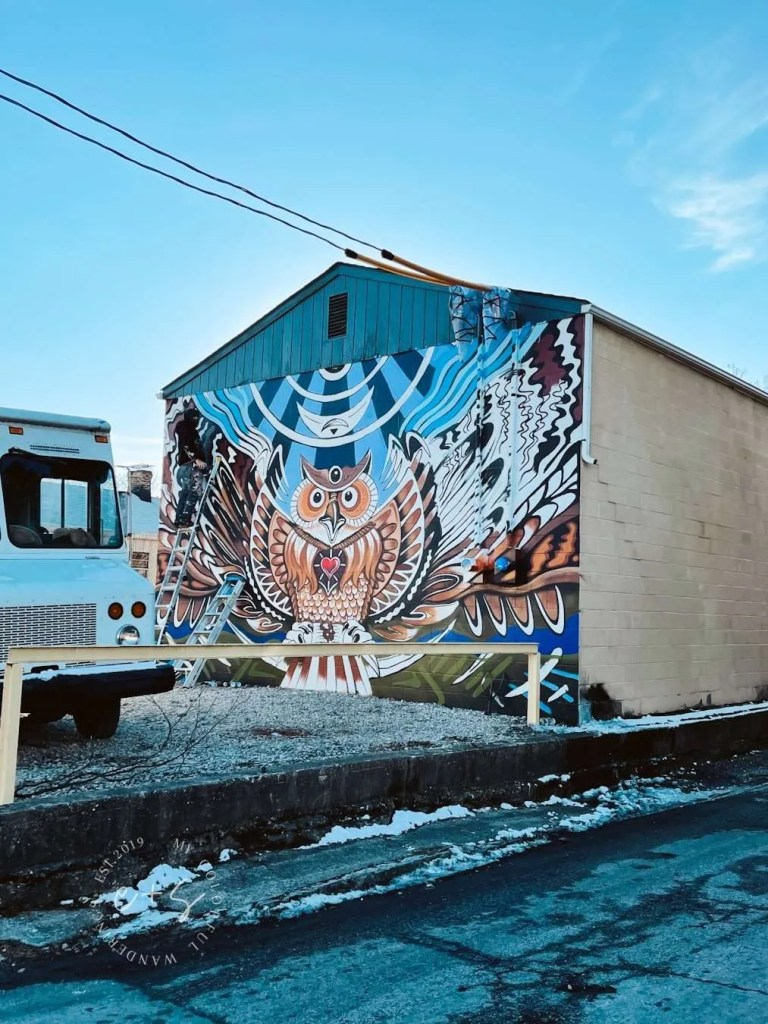 Vibey Owl Mural - Louisville Murals