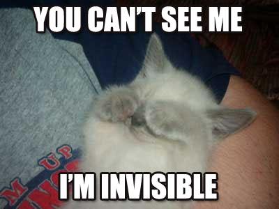 cant-see-me.jpg
