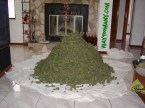 Ton of Weed