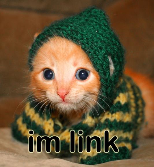 linky-cat.jpg