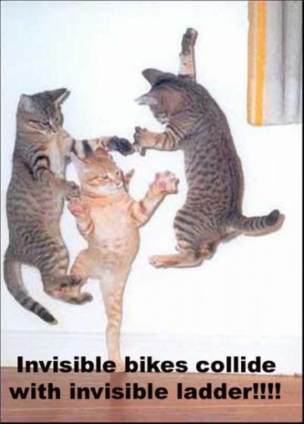 invisible-bikes-collide-with-invisible-ladder.jpg