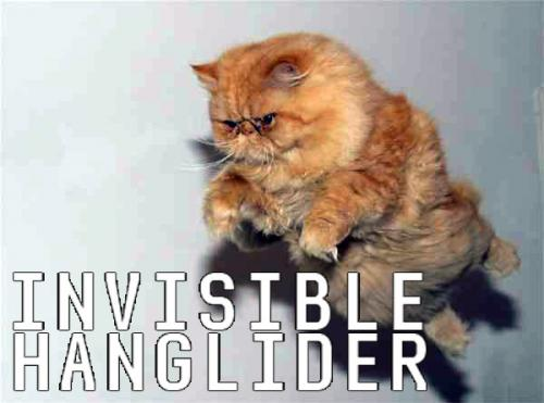 invisible-hanglider.jpg