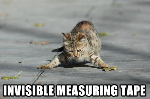 invisible-measuring-tape.jpg