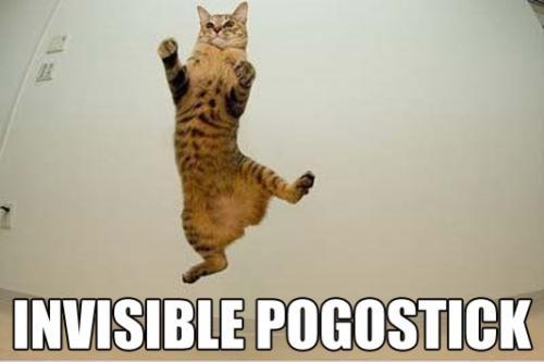 invisible-pogostick.jpg