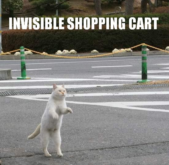 invisible-shopping-cart.jpg