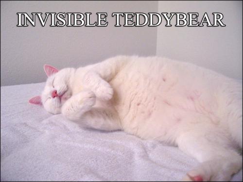 invisible-teddybear.jpg
