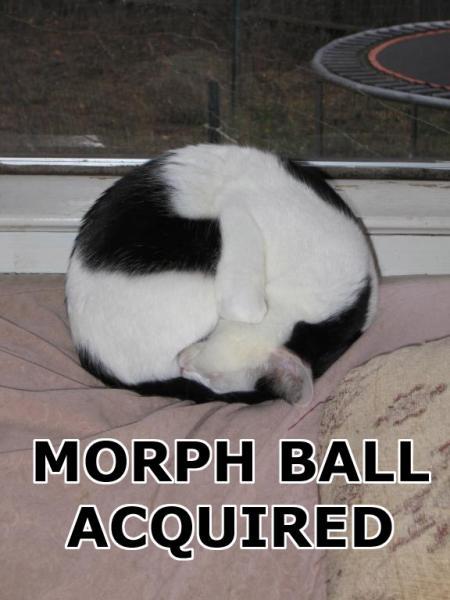 morph-ball-acquired1.jpg