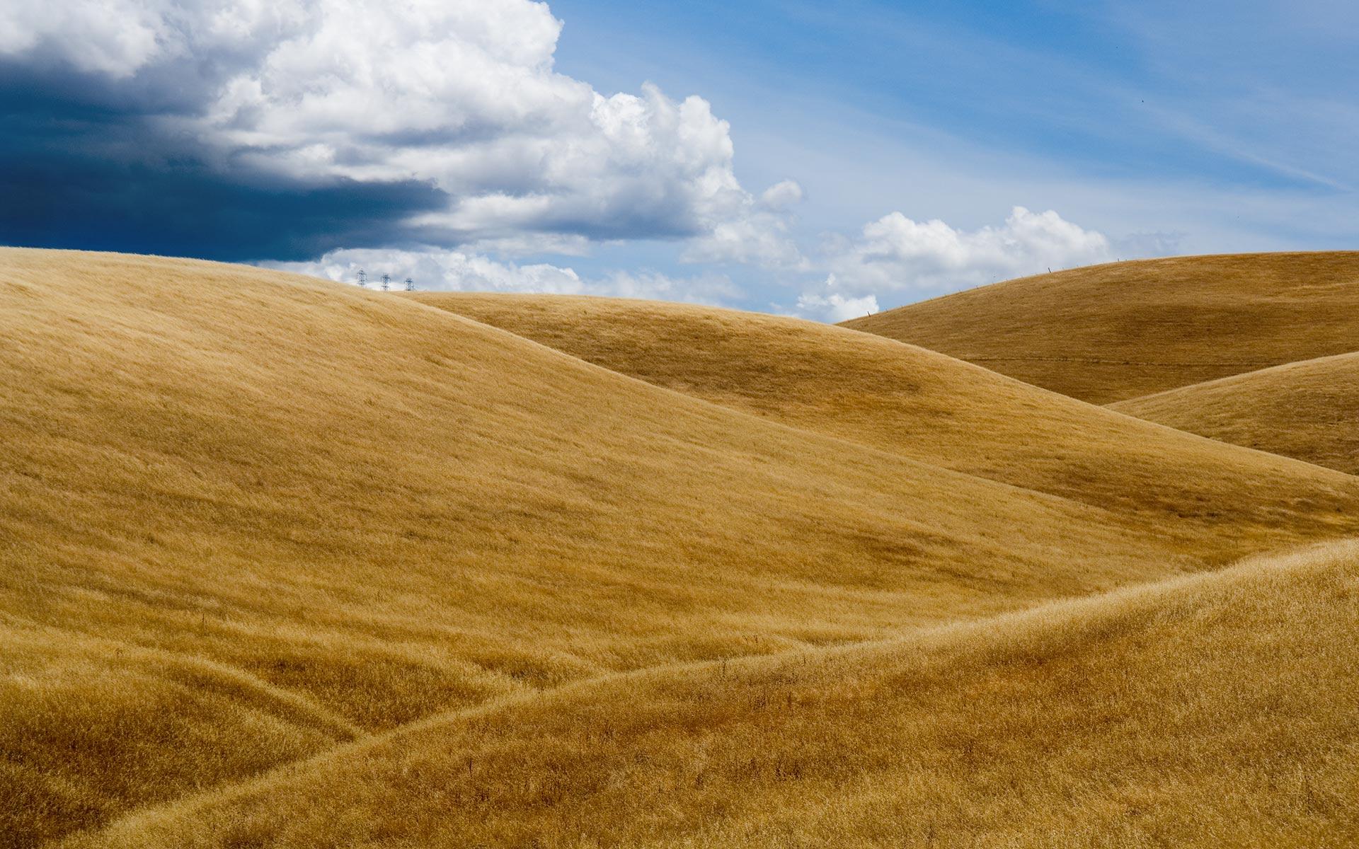 Amber Waves Of Grain Wallpaper Myconfinedspace