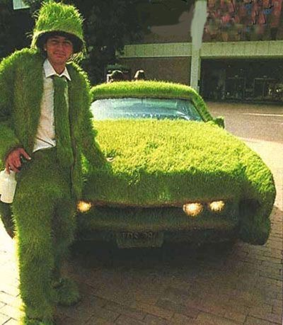green-grass-car.jpg