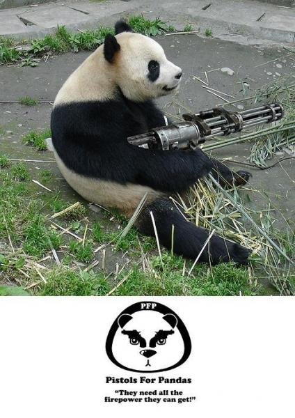 panda needz protection too...