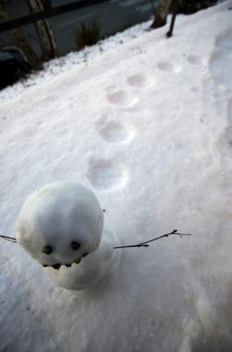 hopping-snowman