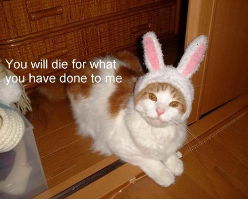 you-will-die.jpg