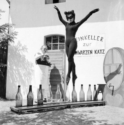 catwoman bottle walk