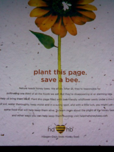 plant this page - save a bee