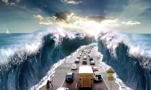 Moses Transports