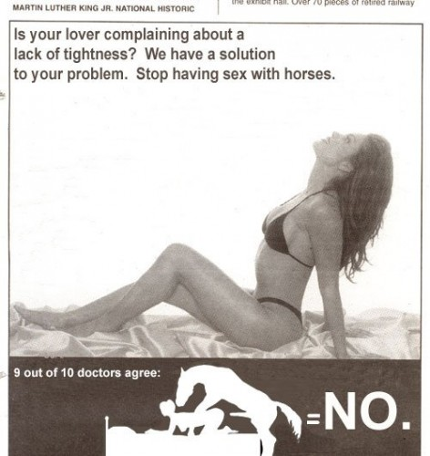 Stop having sex with horses